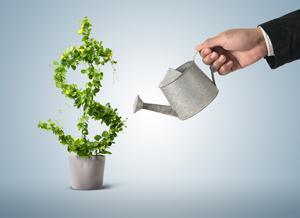 property-investment-igrow